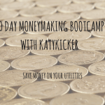 TMS Money Making Bootcamp – Save money on your utilities
