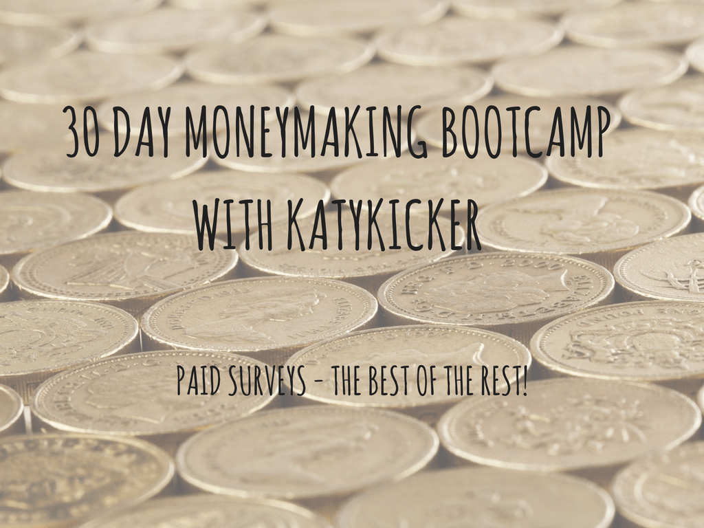 TMS Money Making Bootcamp - Paid surveys - the best of the rest!