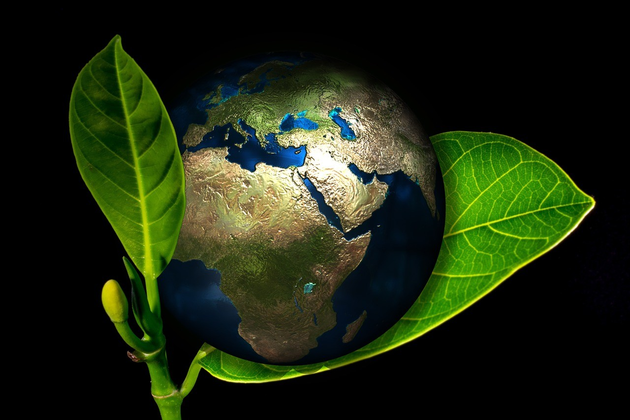 How to be Eco-Friendly from Your Home