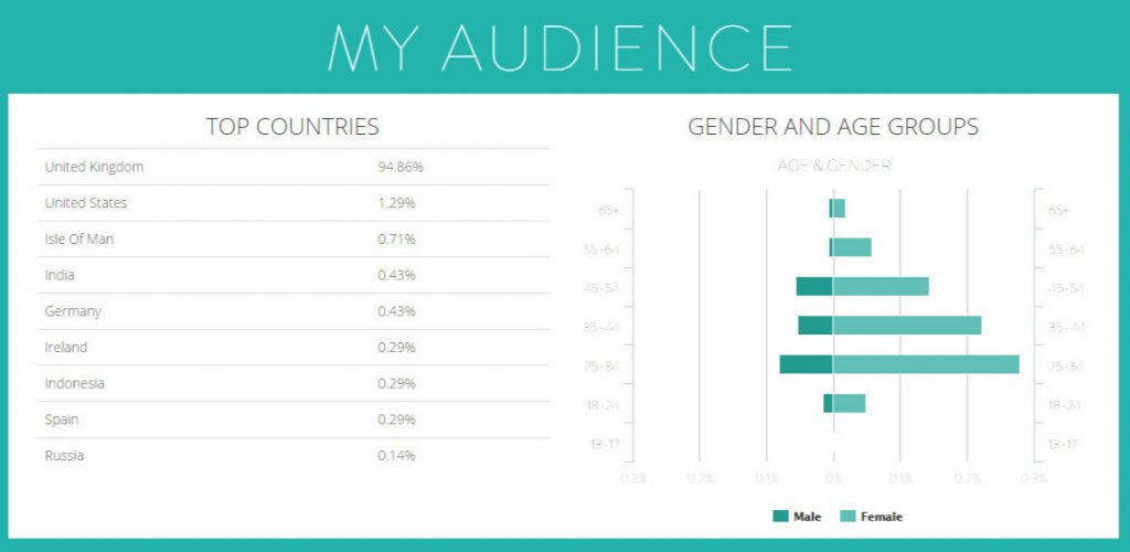 Webfluential audience demographics