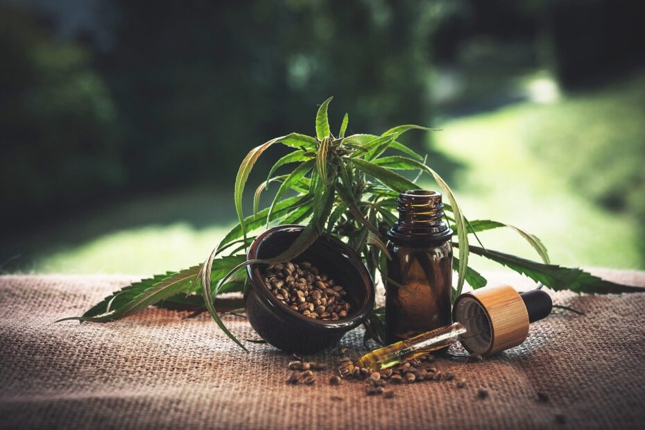CBD oil benefits on humans and animals