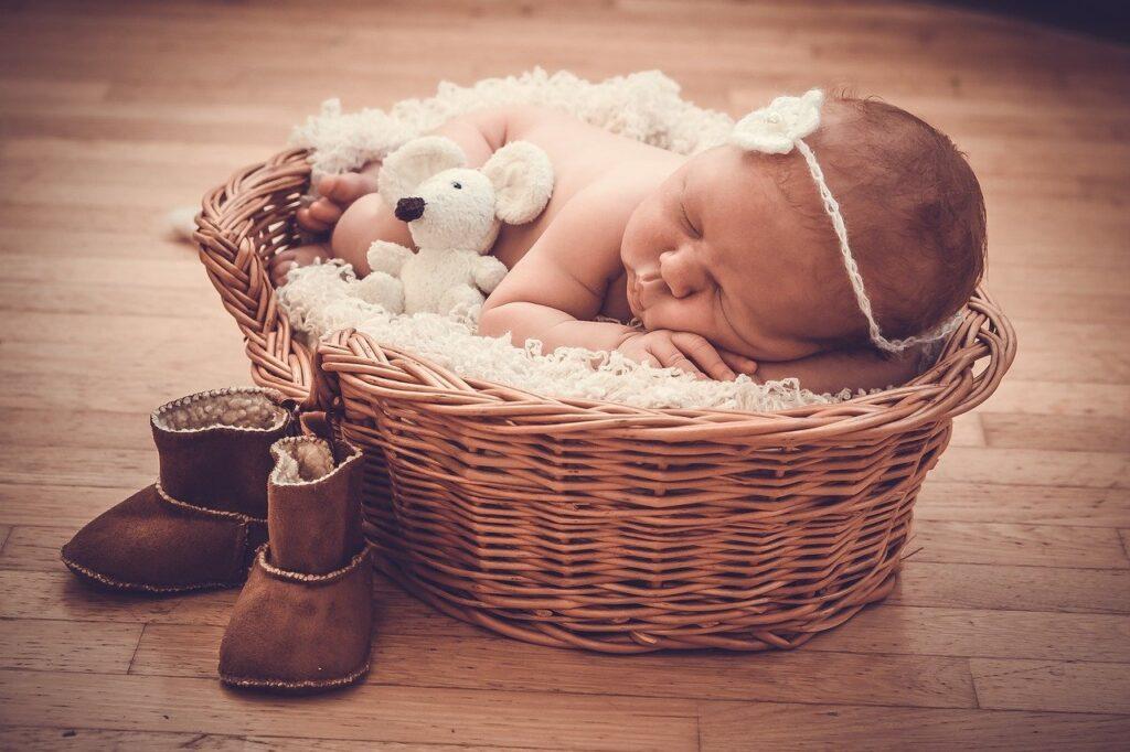 newborn freebies